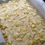 Moelleux pommes noisettes